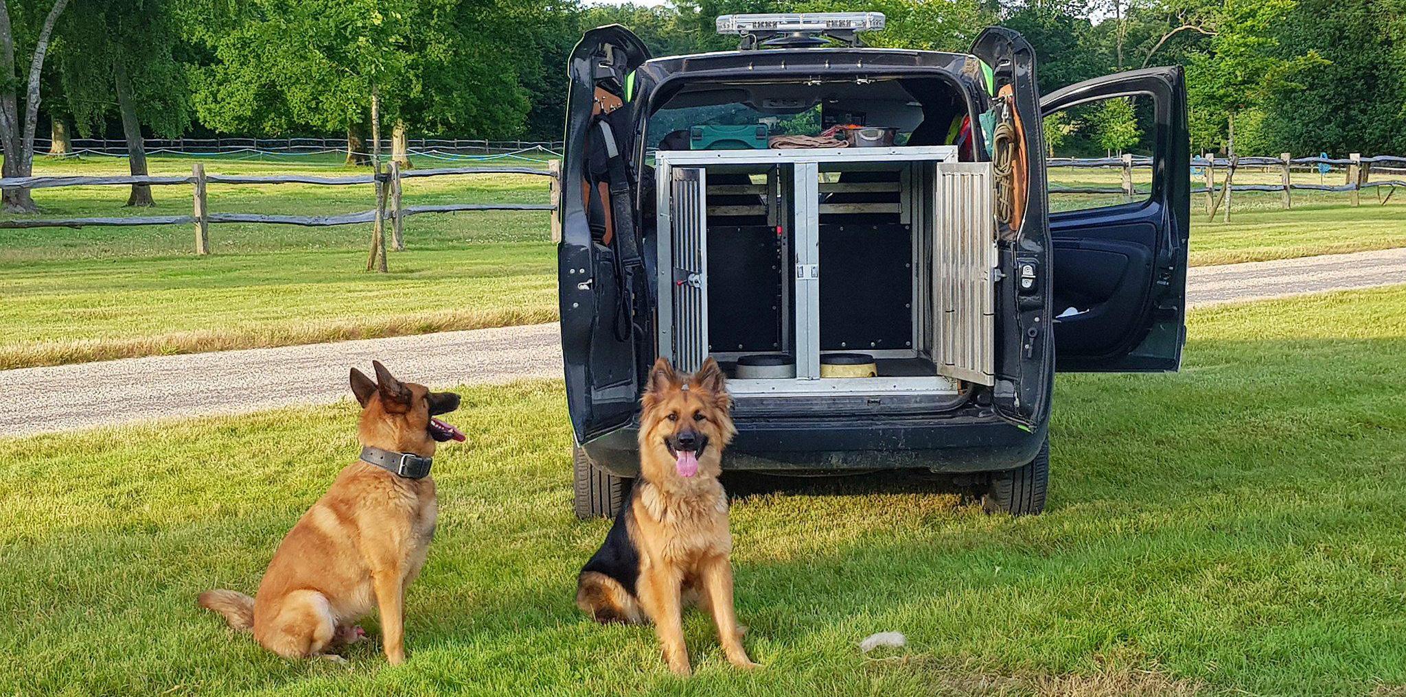 Security dog unit