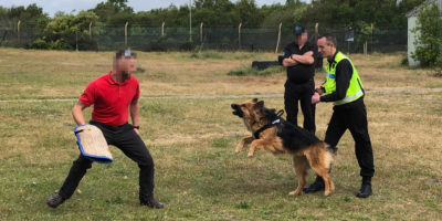 A Secure Site dog handler being trained and assessed at a NASDU training centr